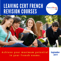 Leaving Cert Revision Course
